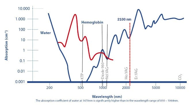 absorpcja wody