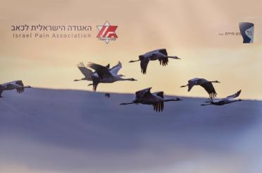 Israel Pain Association